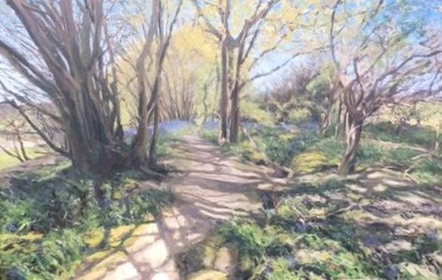 Jaime Etherington. Bluebell Wood.