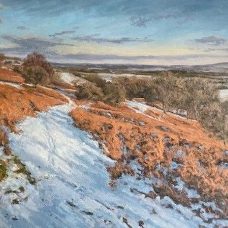 Jame Etherington. Snow on Garway Hill