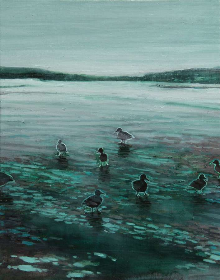 Joseph Davey. Ducks on the ice of Storsjön.
